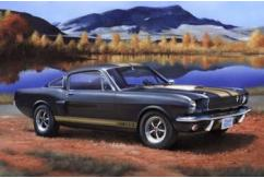 Revell 1/24 Shelby Mustang GT350H image